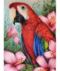 Animal Drawings, Art Drawings, Diamond Drawing, Color Pencil Art, Fabric Painting, Bird Art, Beautiful Birds, Parrot, Canvas Art