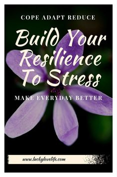 Reduce your stress. Learn to adapt and be more resilient to stress. Manage stress and how it affects you. Conquer the bad days. Love your life.
