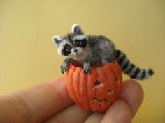 Miniature Baby Raccoon with Pumpkin OREON OOAK Dollhouse 1:12 pet animal cat #byOreonOOAK