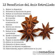 13 Beneficios del Anís Estrellado que te sorprenderán.