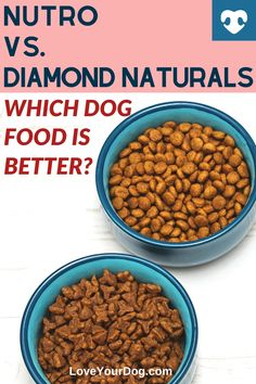 Can't decide between Nutro vs. Diamond Naturals for your pup's next meal? Find out all you need to know about these dog food manufacturers in this comparison! #loveyourdog #dogfoodcomparisons #dogfood #nutrodogfood #diamondnaturalsdogfood #bestdogfood #dogfoodreviews Nutro Dog Food, Best Dog Food, Best Homemade Dog Food, Best Dogs, Merrick Dog Food, Dog Food Comparison, Dog Food Reviews, Grain Free Dog Food, Dog Food Brands