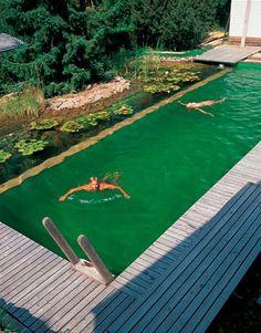 Freshwater home pool.... a big tick!