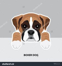 Vector Illustration Portrait of Boxer dog Puppy. Labrador Puppy Training, Labrador Puppies, Boxer Dog Puppy, Most Popular Dog Breeds, Online Pet Supplies, Dog Illustration, Puppy Care, Boxers, Cartoon Dog