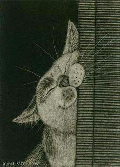 I Love Cats, Crazy Cats, Cute Cats, Weird Cats, Cat Drawing, Drawings Of Cats, Drawing Ideas, Drawing Animals, Cat Art