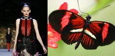 Trendinista: NY Fashion Week: Zac Posen's Butterflies