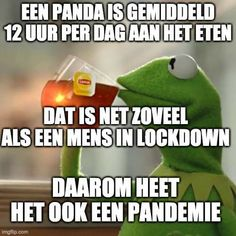 lol oh wow. Social Media Games, Dutch Quotes, Parrot, Funny Pictures, Funny Quotes, Lol, Memes, Karma, Cartoons
