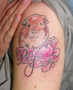 Not finding any good guinea pig tattoos :-(