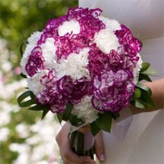 Premium Purple and White Carnation Bridal Bouquet | Global Rose