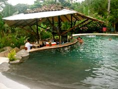 Love this pool in Costa Rica mountains, swim-up bar and all!
