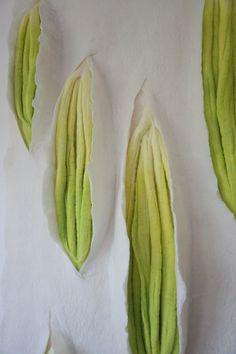 Seeds 2 by Anna Kristina Goransson #UMassDartmouth #Alumni