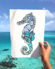 Seahorse. Animal Drawings and Mandalas. By Faye Halliday.