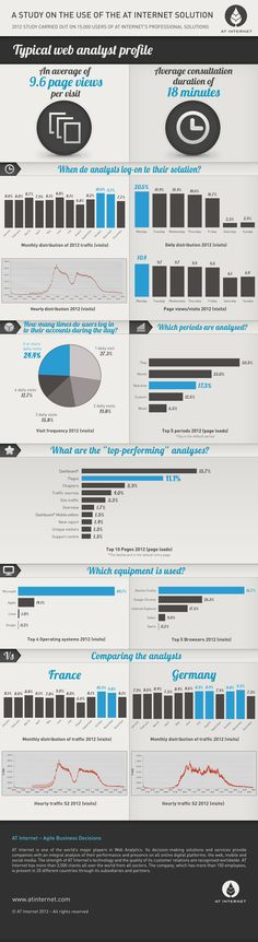 Typical web analyst profile #infographic By www.riddsnetwork.in/about  (Professional SEO Company)