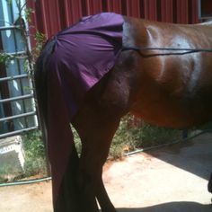 Horse grooming drape . Used to protect your horse from Whoas ! Manufactured by Royal Bloodline Color .