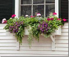 06-plant-window-box