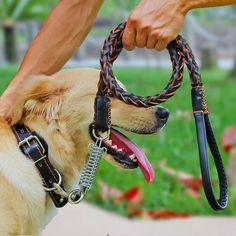 Leather Dog Leash       Deal of the day >>>   http://amzn.to/2d6lZl8