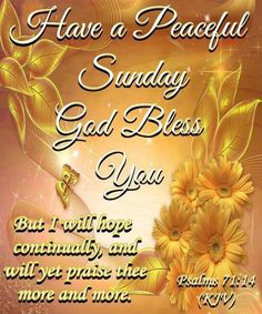 """Have a Peaceful Sunday God Bless You !!!!  Psalm 71:14 (1611 KJV !!!!) """" But I will hope continually, and will yet praise thee more and more."""""""