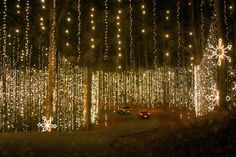 If you're ever in Georgia around Christmas, don't miss the Fantasy in Lights at Callaway Gardens!