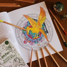 Try Out The New Harry Potter Colouring Books