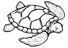 Adult Coloring Pages Sea Turtle 1 from Animal Coloring Pages category. Printable coloring images for kids you could print out and color. Have a look at our series and print the coloring images free of charge. Ocean Coloring Pages, Turtle Coloring Pages, Detailed Coloring Pages, Coloring Pages For Boys, Mandala Coloring Pages, Animal Coloring Pages, Coloring Pages To Print, Free Coloring Pages, Coloring Books