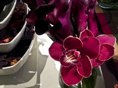 Orchid is a beautiful details for any tablescape. Tablescapes, Orchids, Detail, Beautiful, Table Scapes, Table Arrangements, Orchid