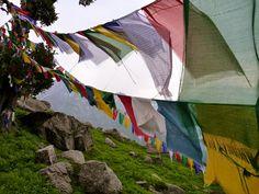 Tibetan prayer flags at Triund  Himachal Pradesh, India