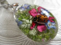 Real Ladybug Pink Verbena Forget-Me-Nots by giftforallseasons