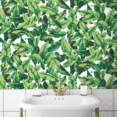 """Howard Palm Leaf 16.5' L x 20.5"""" W Floral and Botanical Peel and Stick Wallpaper Roll"""