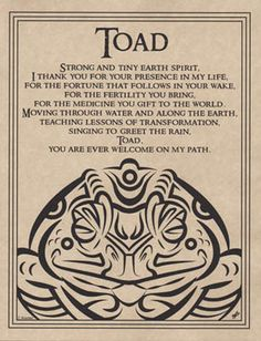 TOAD BLESSING POSTER A4 SIZE Wicca Pagan Witch Witchcraft BOOK OF SHADOWS picclick.com