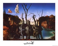 Swans Reflecting Elephants, c.1937 by Salvador Dali art print