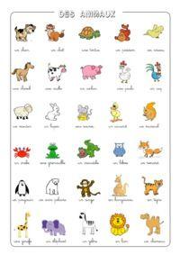 Beaucoup de fiches de vocabulaire avec les images