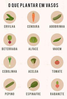 legumes-para-plantar-em-vasos