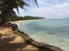 Mirissa Sri Lanka. Conoce el #Top5 de las mejores #Playas de #SriLanka con Desarrollo Peregrino tu #blog de Viajes.