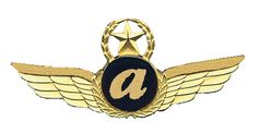 Examples Of Logos, Vintage Airline, Pilot, Safety, Wings, Cards, Security Guard, Pilots, Maps