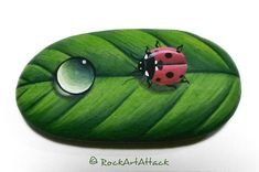 A red ladybug sitting on a green leaf with waterdrop, hand painted pebble fridge magnet, totally handmade by me, with a strong Neodymium round Magnet in the back side which make it ideal for decorate your home refrigerator or make a beautiful gift to your loved ones! ☛ You can decide