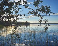 KATSE VASEMPAAN PÄIN: KATKENNUT OKSA Finland, River, Outdoor, Outdoors, Outdoor Living, Garden, Rivers