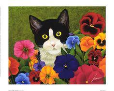 katten afbeeldingen - Google zoeken