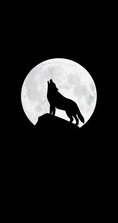 Howling wolf iphone wallpaper iphone wallpapers in 2019 милы Iphone Wallpaper Wolf, Black Wallpaper Iphone Dark, Minimal Wallpaper, Cellphone Wallpaper, Galaxy Wallpaper, Wallpaper Backgrounds, Trendy Wallpaper, Phone Backgrounds, Wolf Background