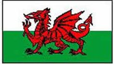Wales Flag 5ft x 3ft (Qty per unit: 1). http://www.novelties-direct.co.uk/wales-flag-5ft-x-3ft-100-polyester-with-eyelets-for-hanging.html