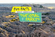 Check out these weird and unusual facts about our National Parks & celebrate the 100th anniversary of the U.S. National Park Service!