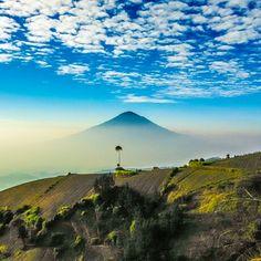 The top of Mount Cikuray