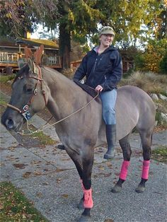 Hello world, I am Adina Roberts. I have dedicated my life to horses. Horses for me are a lifelong obsession/passion and after the death of my father in 2009 I stopped working as an executive and fo...