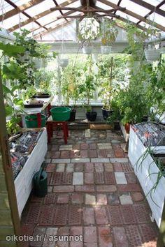 Tiled floor in greenhouse.