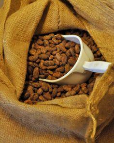 Feves de cacao patrice chapon manufacture cacao                                                                                                                                                                                 Plus