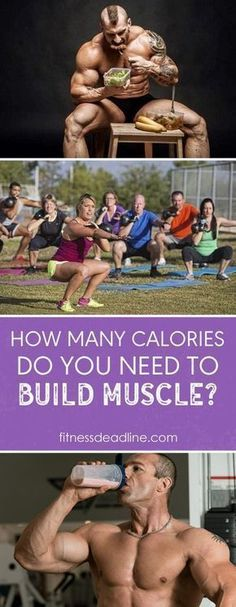 People tend to forget their calorie intake when attempting to gain muscle. You need to consider the amount of calories you are consuming every day to ensure proper muscle growth. Muscle Diet, Muscle Food, Muscle Mass, Gain Muscle, Musa Fitness, Fitness Diet, Fitness Motivation, Workout Fitness, Build Muscle Fast