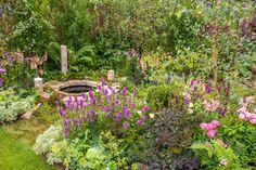 A Midsummer Night's Theme (Back to Back Garden) at RHS Tatton Park Flower Show 2015.