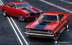 American Muscle Cars photo Camaro and Plymouth