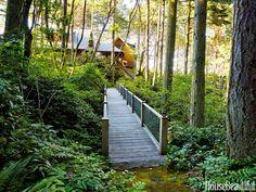 Warm and Rustic Modern House - Organic House Design - House Beautiful
