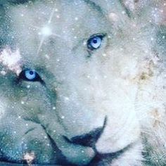 "We talk about the Lion's Gate, August 8th...but do we really understand what it is? First off, it's hugely powerful, here's why? Every year on August 8th, there is a cosmic alignment called ""the Lions Gateway"". The Lions Gate is when Earth aligns with the Galactic Center, (27 degrees Sagittarius) and the star Sirius, opening a cosmic portal between the physical and spiritual realms. It's called the Lions Gate, or Lions Gateway because it occurs in the astrological sign of Leo (the Lion). Leo"