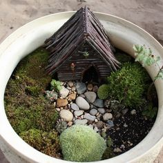 Juise: Fairy Garden: Expand and Furnish  You could do this in a little pot for sadie