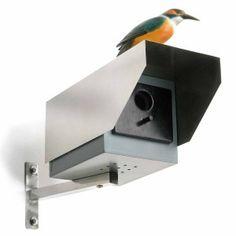 Telecamera per sorveglianza con casa per uccelli